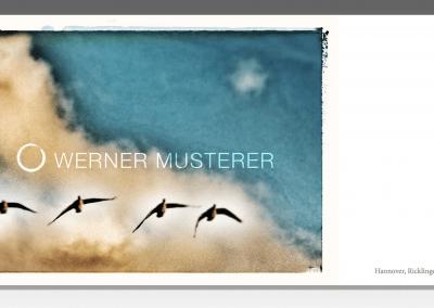 Postkarte Graugänse