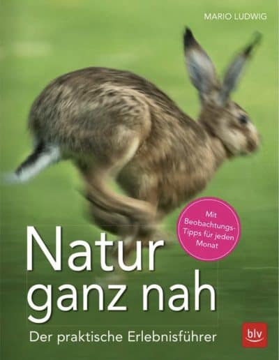Buch »Natur ganz nah«